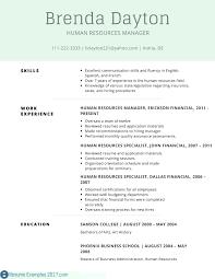 Volunteer Work Resume Examples Resume Volunteer Work Resume