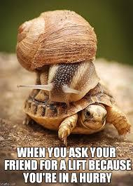Slow Day Meme Generator - Imgflip via Relatably.com