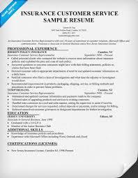 Insurance Customer Service Resume   sample resume for customer service