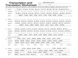 What are the four steps of transcription? Trna And Mrna Transcription Worksheet With Answer Key Essential Biology 7 3 7 4 Transcription Translation Ahl Dna Transcription And Translation Worksheet Answer Key
