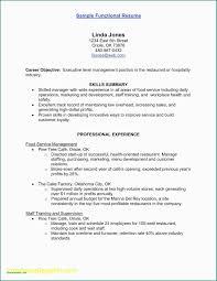 Resume Executive Summaries 10 Examples Of Executive Summaries Resume Letter