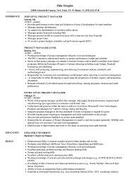 Performance Reviews Samples Project Manager Performance Review Goals Level Resume Samples Velvet