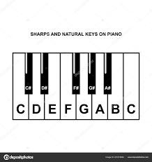 Piano Keys Chart Piano Chords Piano Key Notes Chart White Background Vector