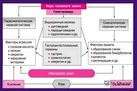 Презентация на тему Язвенная болезнь желудка и  12