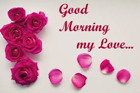 Good Morning Love Images Pictures 40 Free Download Beauteous Good Morning My