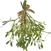 Image result for hanging mistletoe uk