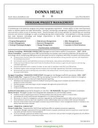 Fresh Project Manager Resume Qualifications It Project Manager