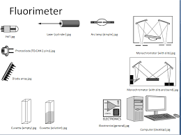 Use The Parts Below To Build A Fluorimeter Then E