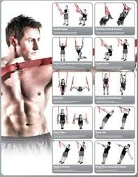 Trx Exercises Chart Trx Workout Plan Functional Workout With Trx Loops