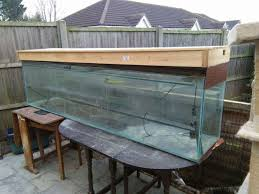 Cool Aquariums For Sale Decorations Big Fish Tanks For Sale With Exciting And Uniquely