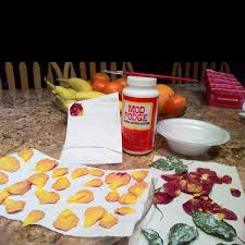 Microwave flower petals to dry them then Mod Podge them to preserve them.  Take petals