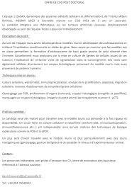 Postdoc Resume Template  templates cover letter postdoc physics