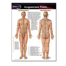 Permachart Acupuncture Points Acupuncture Points
