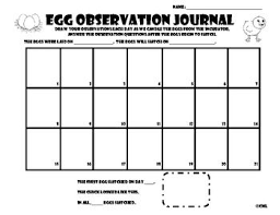 Egg Observation Journal For Incubation And Candling You