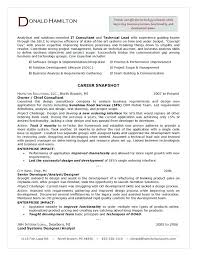 Management Consulting Cv Sample Resume Examples Web Infinite It ...