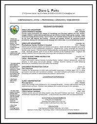 Sample Resume With Volunteer Work Best Professional Resumes
