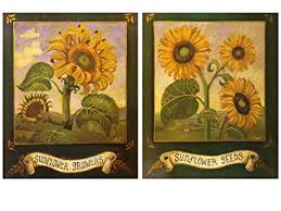 Image Farmhouse Image Unavailable Image Not Available For Color Wallsthatspeak Sunflower Home Decor Amazoncom Amazoncom Wallsthatspeak Sunflower Home Decor Rustic Farmhouse