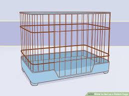image titled set up a rabbit cage step 3