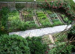Small Picture Vegetable Garden Design Home Design Ideas