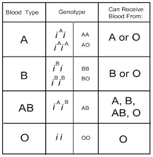 Parent And Child Blood Type Chart Can Children Have Different Blood Types Than Parents