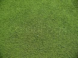 grass soccer field. Grass Soccer Field N