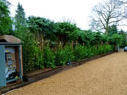 exterior fascinating garden border ideas