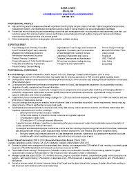 Ba Resume Sample Front End Developer Sample Resume Free Online