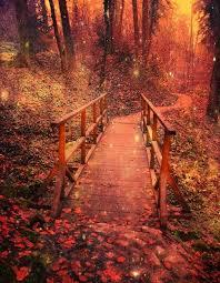 Autumn uploaded by Dulce Lucero on We Heart It