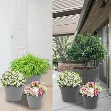 flower plant pots baskets window