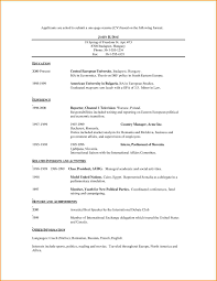 11 Sample One Page Resume Skills Based Resume