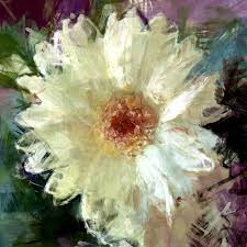 daisy photograph white gerbera daisy by david g paul