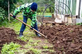 prepare your garden for winter fall