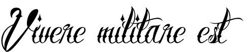 тату надписи эскизы фото и значение