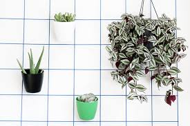 Wall hanging planter