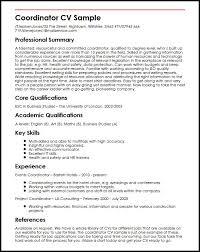 Example Of A Cv Magnificent Cv Sample Uk Jobs