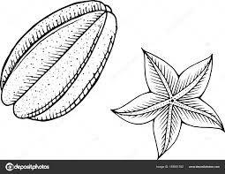 Starfruit Kleurplaat Zeer Fijne Tekeningen Voor Boeken Kleurplaten