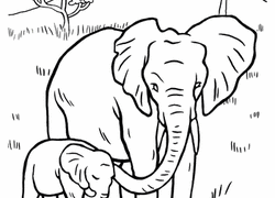 Our elephant coloring pages are free and easy to print. Elephant Coloring Pages Printables Education Com