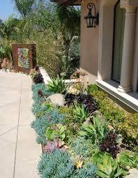 Cactus Landscaping Ideas Succulent Rock Garden D Home Design Houzz Front  Yard Download Solidaria