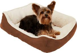 FRISCO Rectangular Bolster <b>Cat & Dog</b> Bed, Brown, Small - Chewy ...