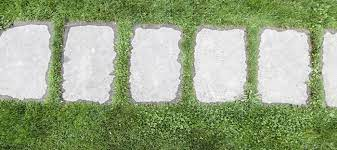 craft stepping stones for a garden path