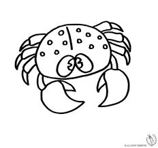 Disegni Di Animali Da Colorare Online Per Bambini Con Immagini Di