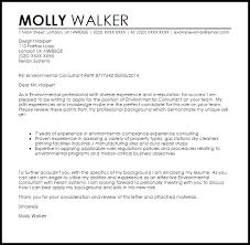 Sample Cover Letter Consulting Magdalene Project Org