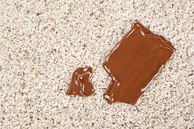 remove chocolate milk from carpet