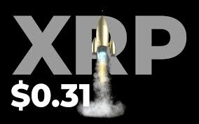 XRP Hits $0.31 Yet Another Time This year