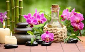 Decorar el jardín según el Feng Shui | Cómo tener un jardín Feng Shui