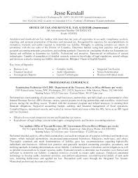 Executive Resume Writing Tips Executive Resume Examples Writing Tips ...