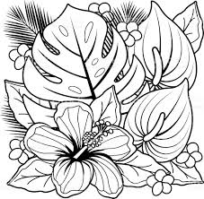Awesome Tropical Flower Coloring Pages Preschool For Funny Tropical