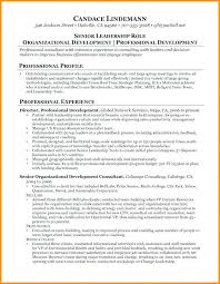 Management Consulting Resume It Consultant Resume Examples Wonderful ...