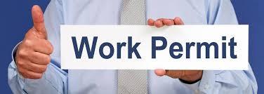 Image result for work permit visa