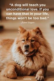 Dog Quotes Love Cool 48 Cute Dog Love Quotes Puppy Sayings And Dog Best Friend Quotes